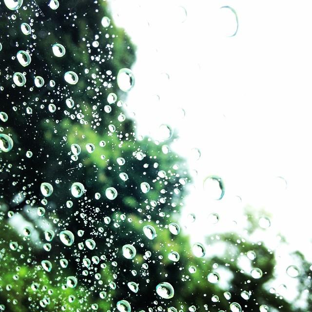 「雨 フリー素材」の画像検索結果